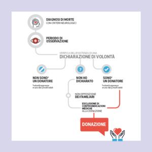 scheda informativa su come avviene la donazione